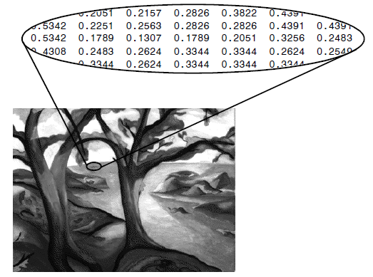 Figure 1: A small section of an image represented in Matrix Format Note values of the pixel average to a single value