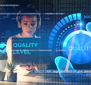 Quality Process Consulting Services
